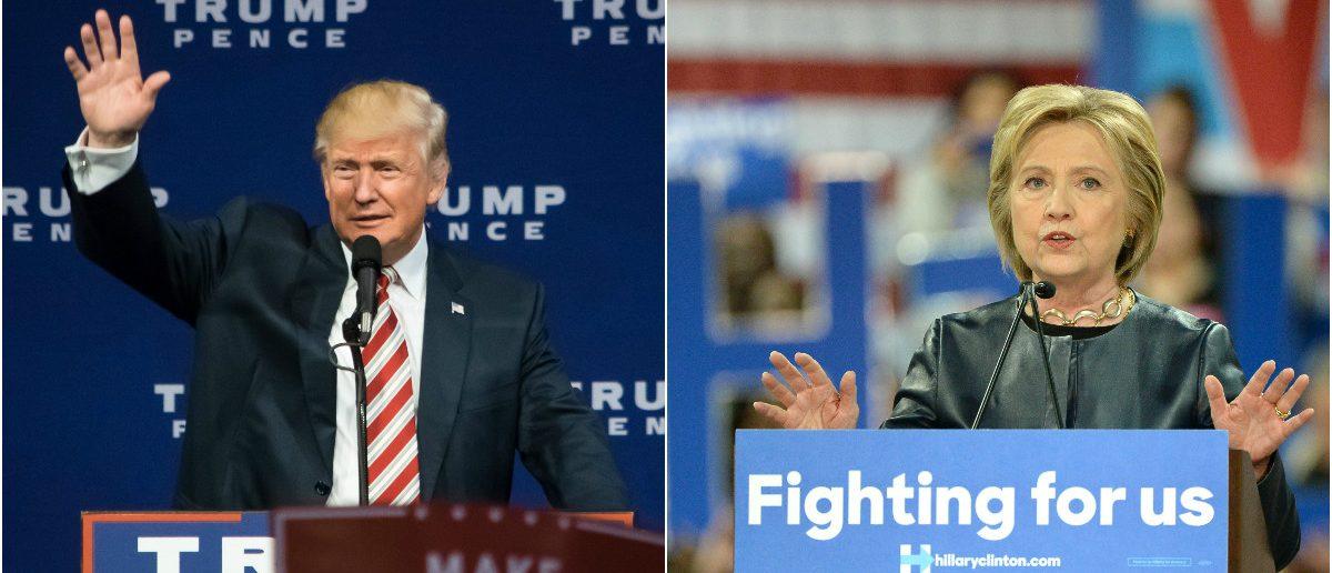 Donald Trump: Joseph Sohm/shutterstock.com, Hillary Clinton: Gino Santa Maria/shutterstock.com