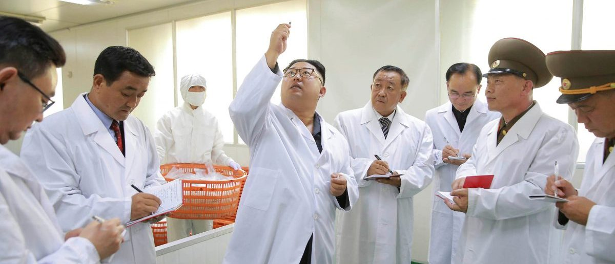 North Korean leader Kim Jong Un gives field guidance during a visit to the Taedonggang Syringe Factory in this undated photo released by North Korea's Korean Central News Agency (KCNA) in Pyongyang September 24, 2016. KCNA via REUTERS