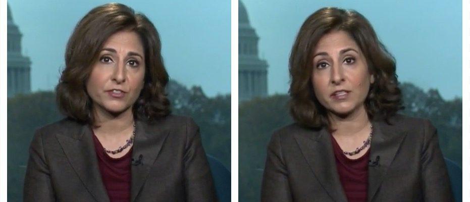 Neera Tanden (MSNBC)