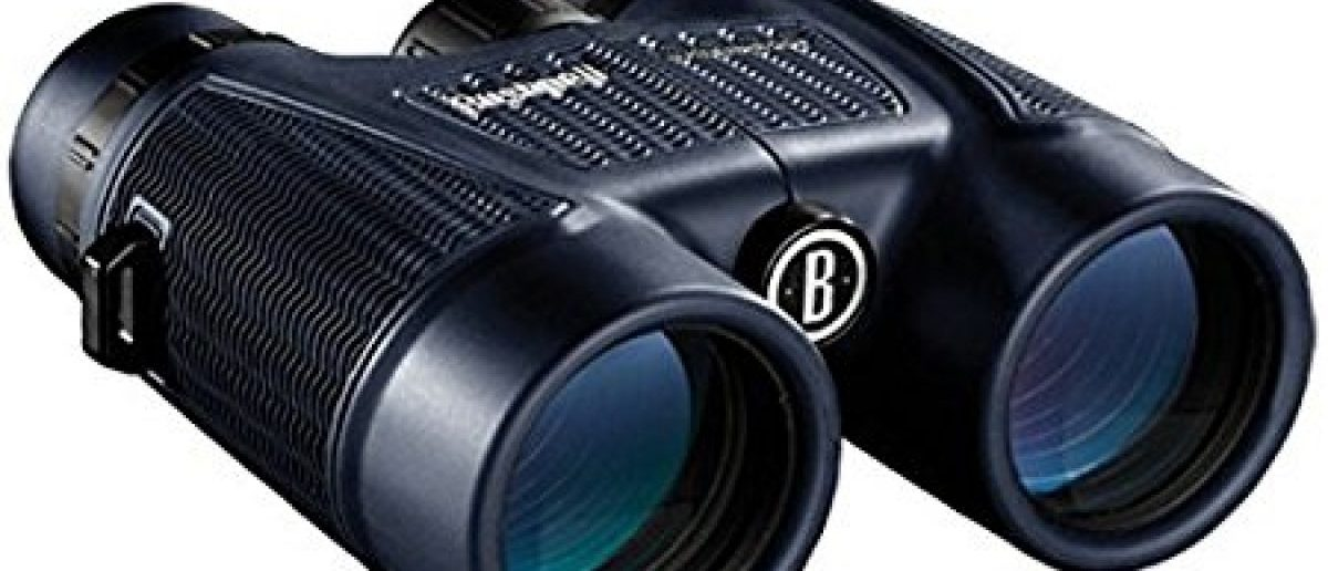 Normally $90, these superb binoculars are $30 off (Photo via Amazon)