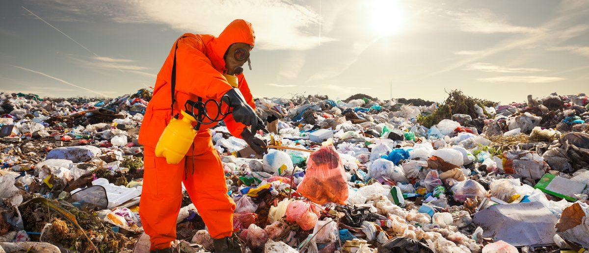 Sanitation worker working on the landfill (Shutterstock/bokan)