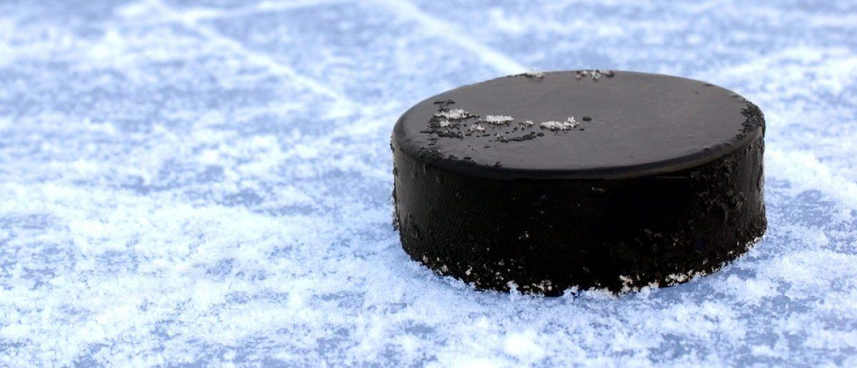 Hockey puck (Credit: Shutterstock)