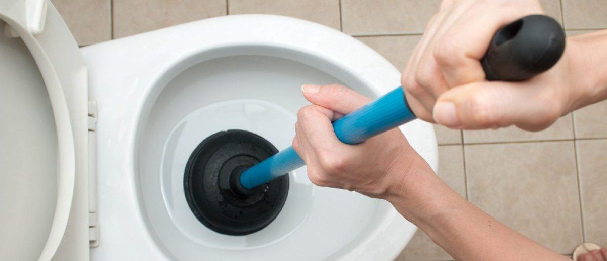 Toilet plunging after big meal. [Shutterstock - sakdam]