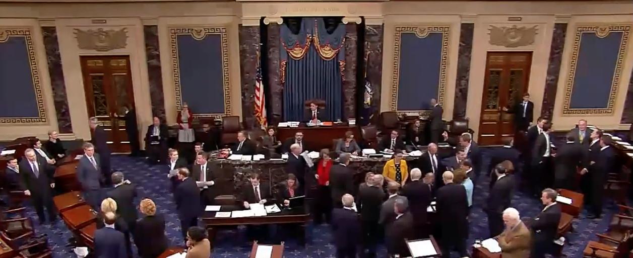 U.S. Senate Floor (CSPAN Screen Shot)