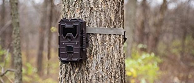 Bushnell trail cameras are on sale today (Photo via Amazon)