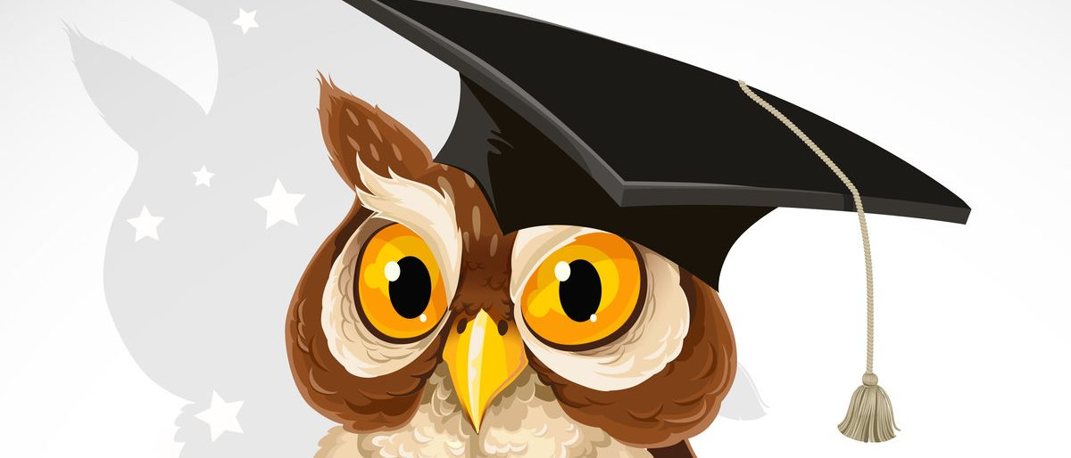 Wise owl in the cap of the graduate (Shutterstock/Azuzl)