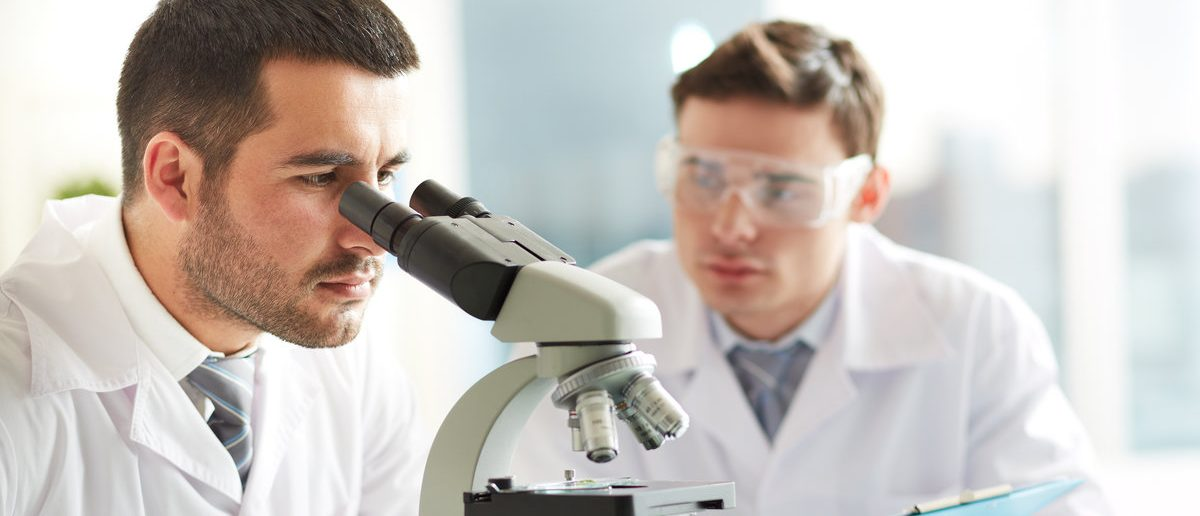 Serious clinicians studying chemical elements in laboratory (Shutterstock/Pressmaster)