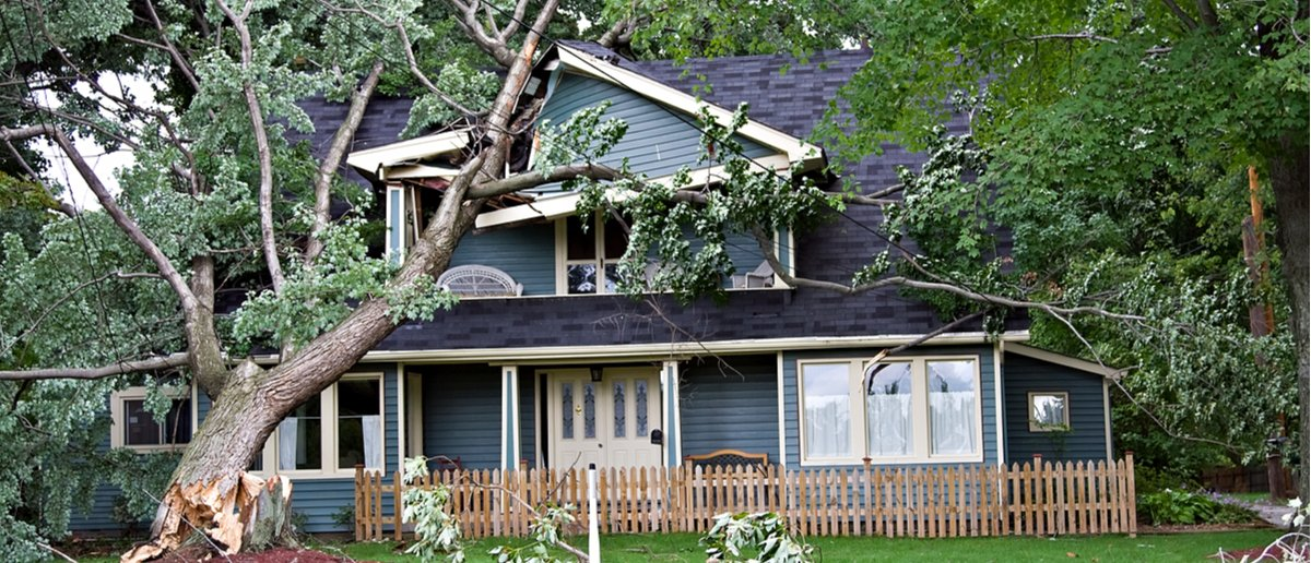 FEMA wastes billions every year in hurricane and disaster relief grants (Photo: Denise Kappa/Shutterstock)