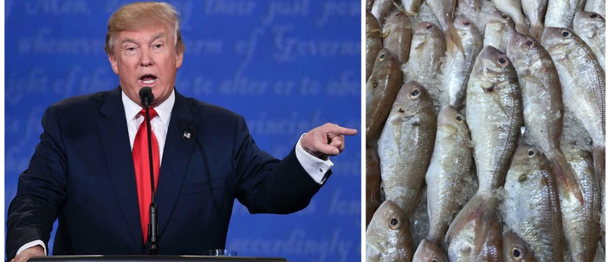 Left: US Republican presidential candidate Donald Trump speaks during the final presidential debate at the Thomas & Mack Center on the campus of the University of Las Vegas in Nevada on October 19. (Photo credit: SAUL LOEB/AFP/Getty Images) Right: Fresh fish at a market. [Shutterstock - Shahrul Azman]