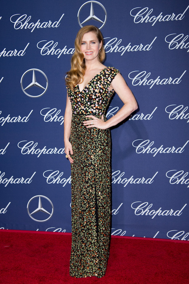 PALM SPRINGS, CA - JANUARY 02: Actress Amy Adams attends the 28th Annual Palm Springs International Film Festival Film Awards Gala at the Palm Springs Convention Center on January 2, 2017 in Palm Springs, California. (Photo by Emma McIntyre/Getty Images)