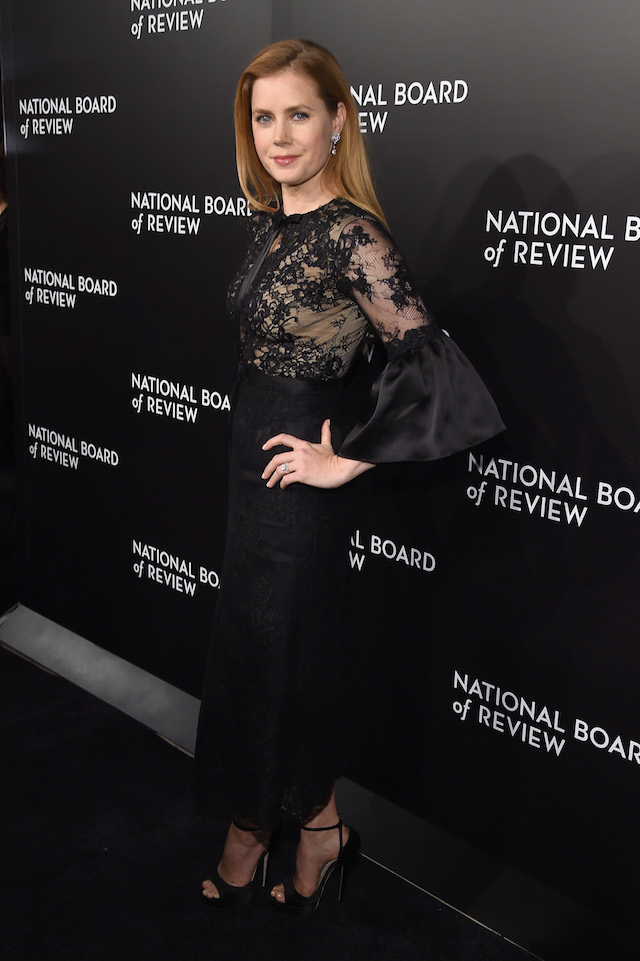 NEW YORK, NY - JANUARY 04: Actress Amy Adams attends the 2016 National Board of Review Gala at Cipriani 42nd Street on January 4, 2017 in New York City. (Photo by Jamie McCarthy/Getty Images)