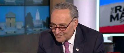 Sen. Chuck Schumer (Screenshot/MSNBC)