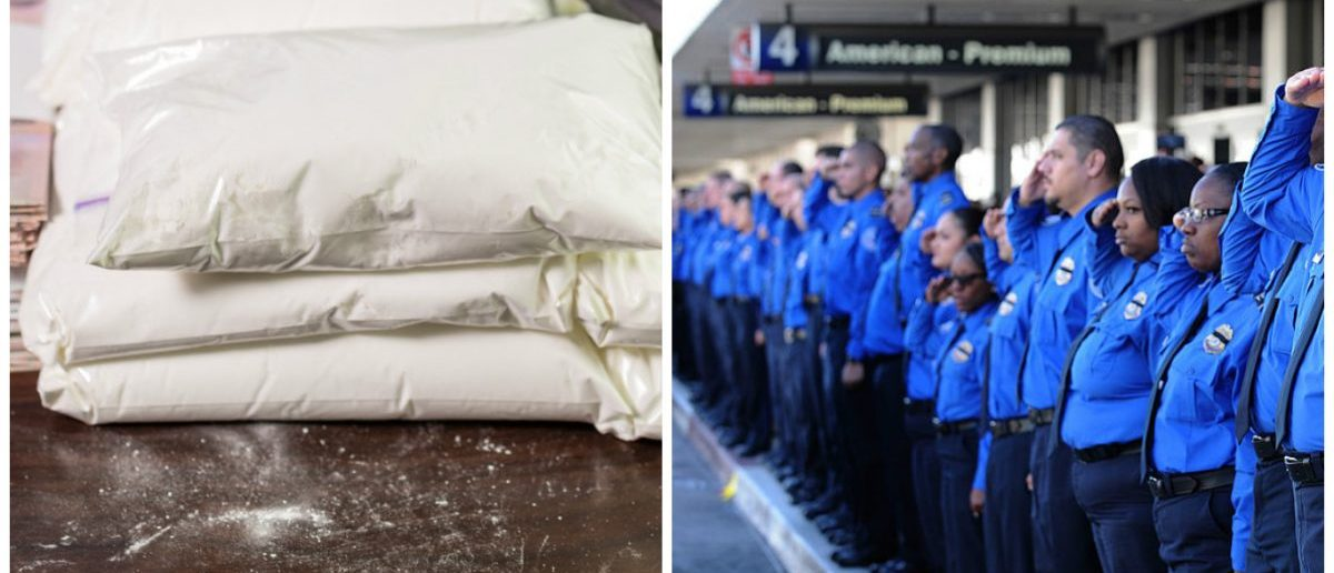 Left: Stash of seized white powder. [Shutterstock - Images By Kenny] Right: LOS ANGELES, CA - NOVEMBER 6: A long line of TSA personnel salute the U.S. Honor Flag procession as it leaves Los Angeles International Airport in memory of TSA agent Gerardo Hernandez. (Photo by Brad Graverson-Pool/Getty Images)
