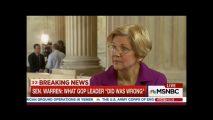 Sen. Elizabeth Warren (Credit: MSNBC Screenshot)