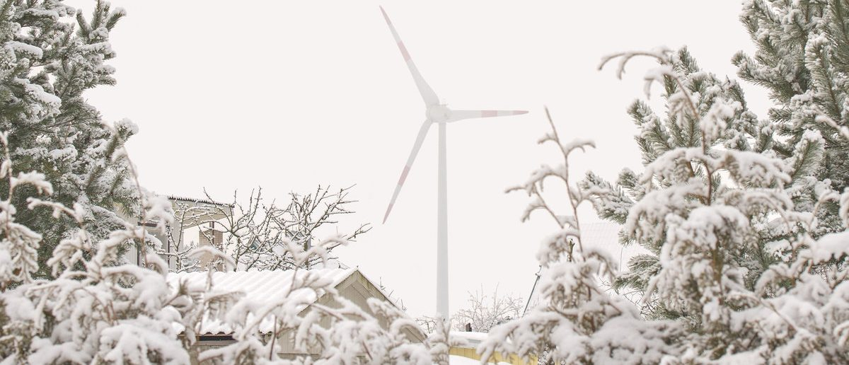 Wind turbine seen through bushes in winter (Shutterstock/Nerijus Juras)