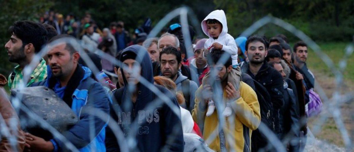 Migrants make their way after crossing the border at Zakany, Hungary October 16, 2015. REUTERS/Laszlo Balogh/File Photo