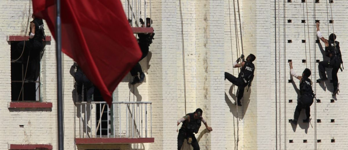Armed policemen from the Special Weapons and Tactics (SWAT) Unit climb up a building during an anti-terrorism drill in Beijing, September 23, 2010. REUTERS/Petar Kujundzic
