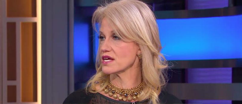 Kellyanne Conway (Photo: ABC screen grab)