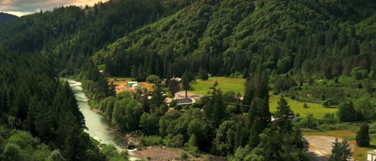 An aerial shot of Tiller, Ore., (Image: Youtube screengrab/The Oregonian)