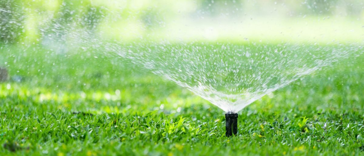 Automatic garden sprinklers are somewhat similar to cyanide devices.[Shutterstock - Fahkamram]