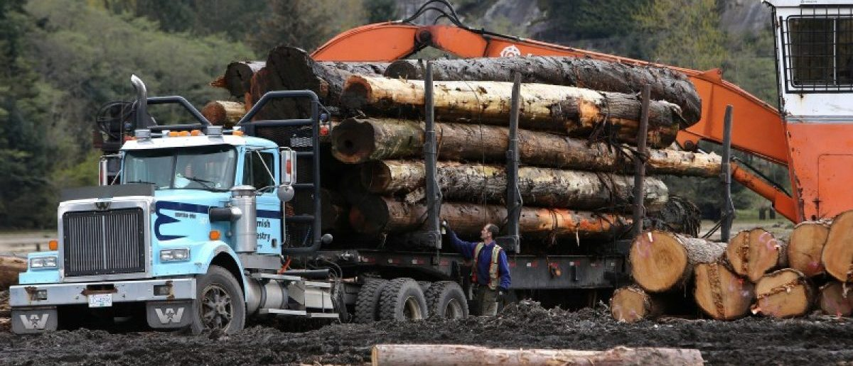 a description of nafta and the timber industry Washington claims canada's timber industry is unfairly subsidized and has cost jobs, including in the northwest the disagreement has persisted for years despite the two countries having signed nafta's predecessor agreement in 1987.