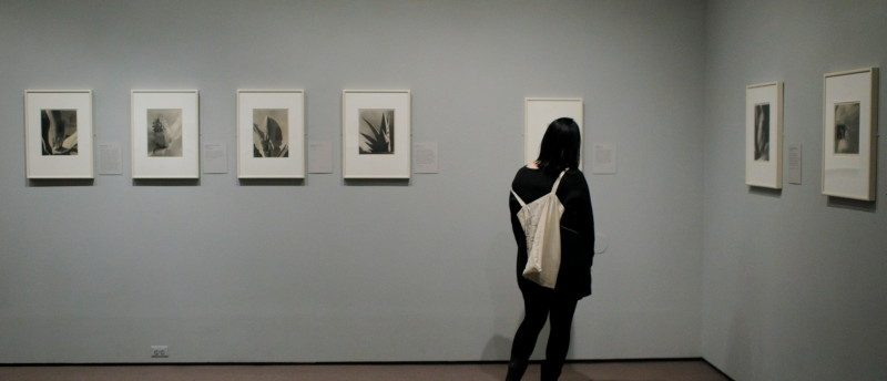 "A visitor looks at the exhibit ""Imogen Cunningham: In Focus"" at the Museum of Fine Arts, Boston, in Boston, Massachusetts, U.S., April 26, 2017. REUTERS/Brian Snyder"