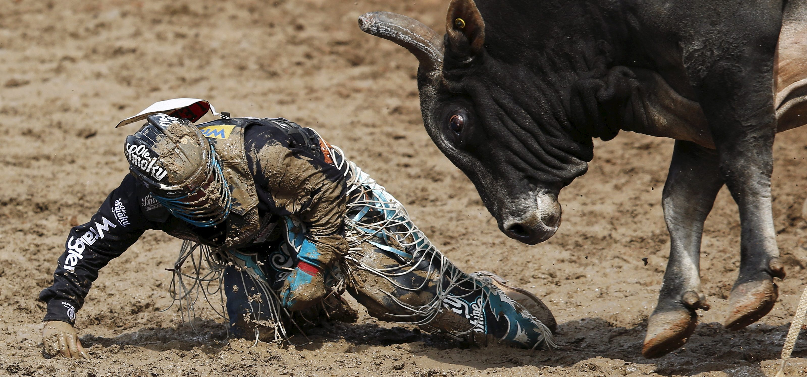 The bull Smoke Show goes after Mike Lee of Fort Worth, Texas after he got bucked off in the Bull Riding event during Championship Sunday at the finals of the Calgary Stampede rodeo in Calgary, Alberta, July 12, 2015. REUTERS/Todd Korol TPX IMAGES OF THE DAY - RTX1K4DV