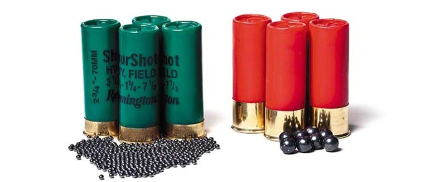 Opinion you Shotgun pellet penetration and velocity