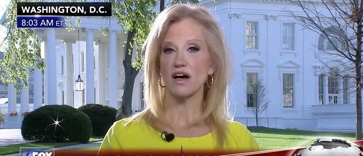 Kellyanne Conway (Fox News)