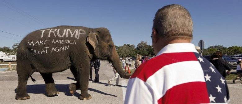 Donald Trump supporters parade an elephant in front of a rally in Sarasota, Florida November 28, 2015. REUTERS/Scott Audette