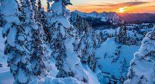 Mt. Rainier National Park in Washington state. (Photo credit: Instagram)