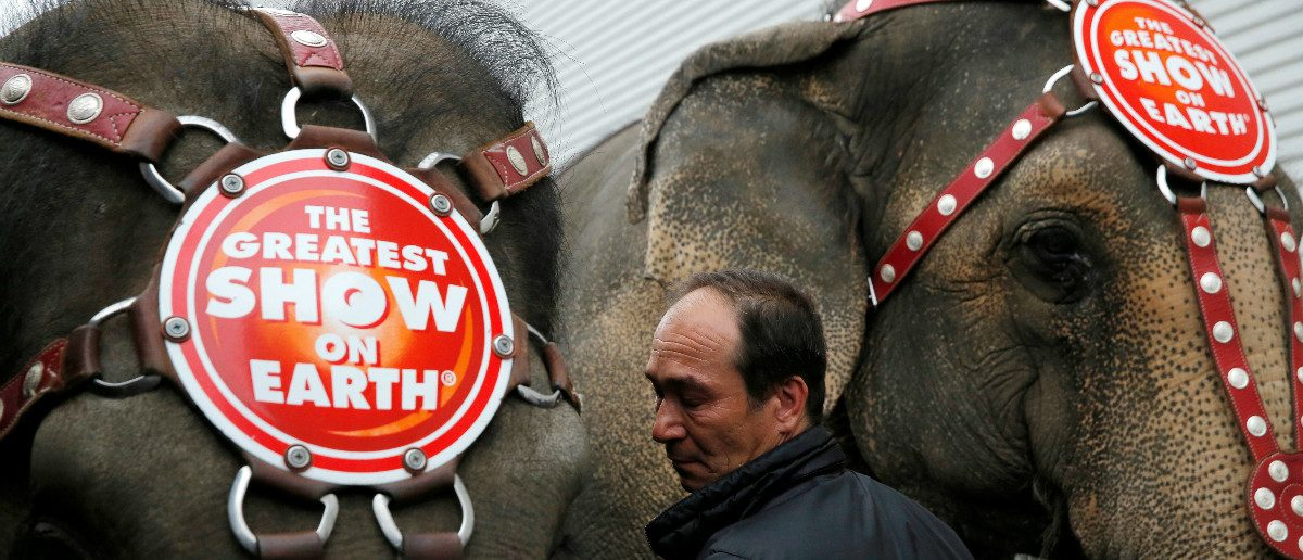 Senior Elephant Handler Alex Petrov interacts with the elephants after they appeared in their final show for the Ringling Bros and Barnum & Bailey Circus in Wilkes-Barre, Pennsylvania, U.S., May 1, 2016. REUTERS/Andrew Kelly