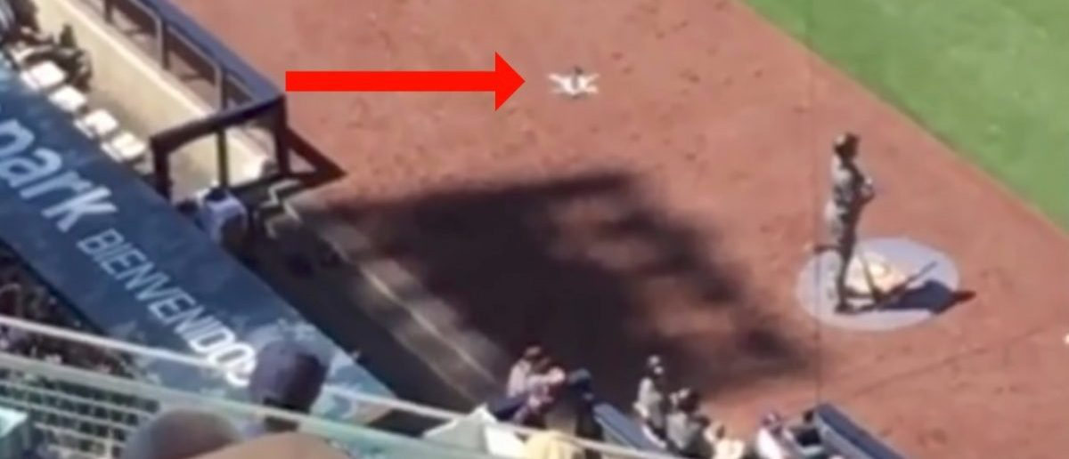 """Gopro Karma Drone Quadcopter Crashes Into Crowd At Baseball Game"" [Screenshot/YouTube/Public - User: Drone Tech]"