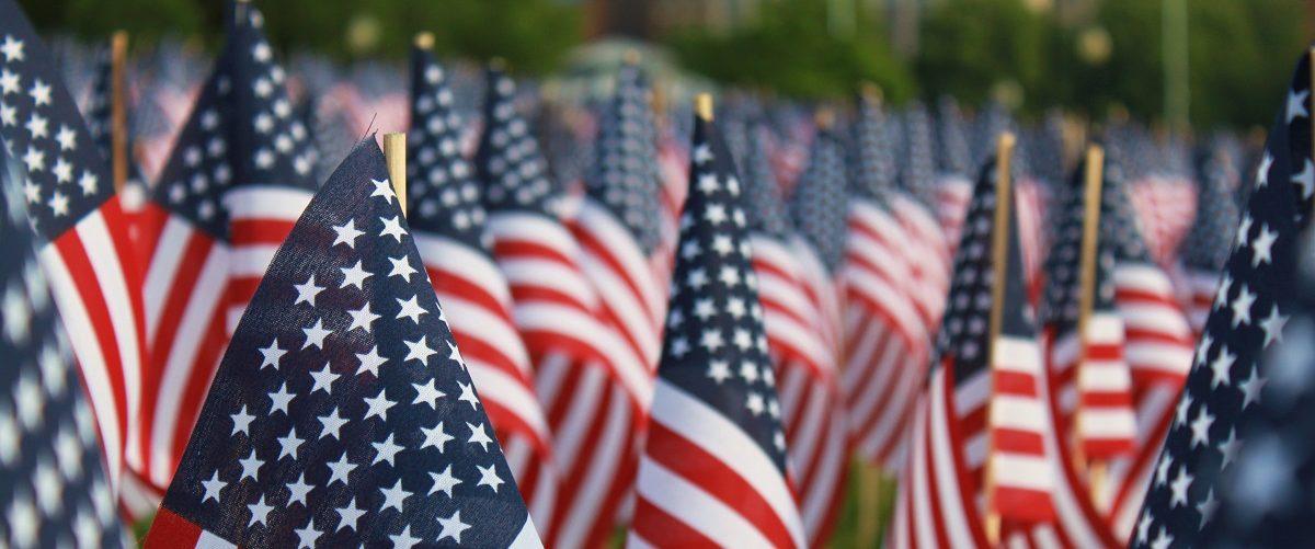 American flags in a park. Steven Bognar/Shutterstock.