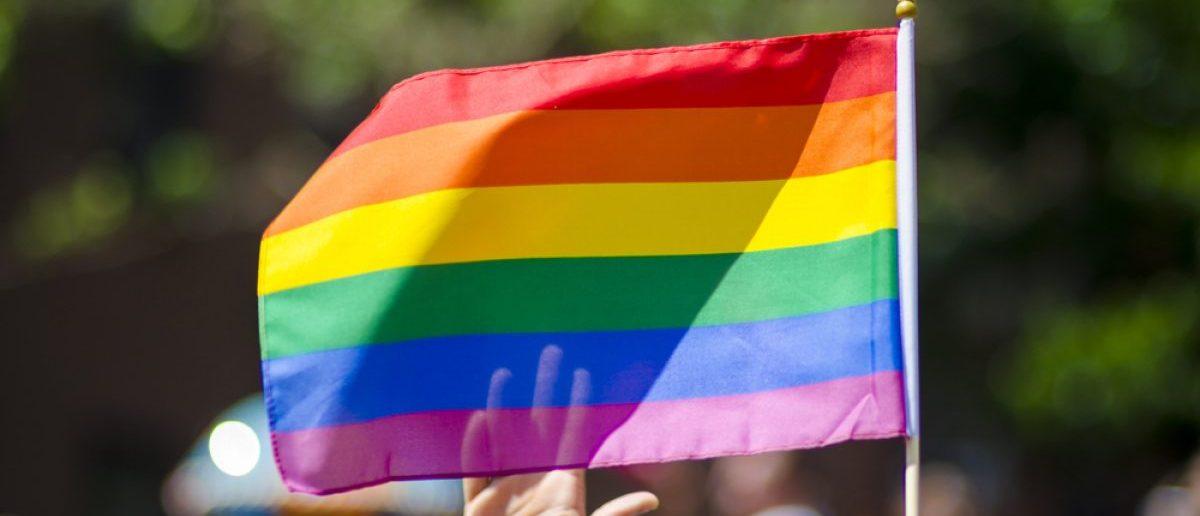 Gay pride (Shutterstock/lazyllama)