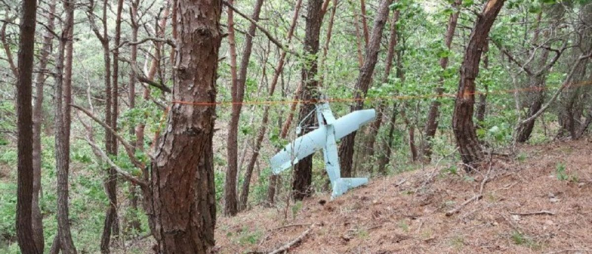 A small aircraft what South Korea's Military said is believed to be a North Korean drone, is seen at a mountain near the demilitarised zone separating the two Koreas in Inje, South Korea in this handout picture provided by the Defence Ministry and released by News1 on June 9, 2017. The Defence Ministry/News1 via REUTERS