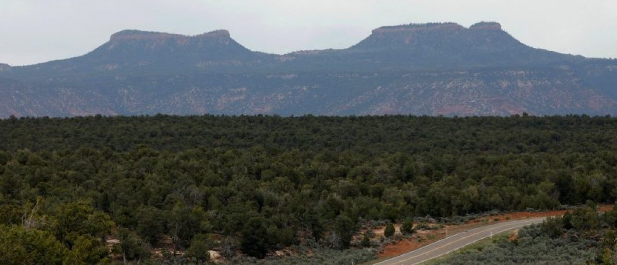 Bears Ears, the twin rock formations which form part of Bears Ears National Monument in the Four Corners region, are pictured in Utah, U.S. May 16, 2017. REUTERS/Bob Strong
