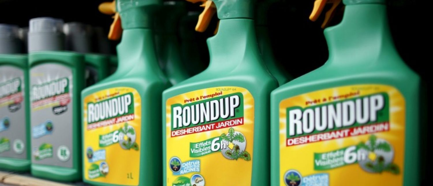 FILE PHOTO: Monsanto's Roundup weedkiller atomizers are displayed for sale at a garden shop at Bonneuil-Sur-Marne near Paris, France June 16, 2015.  To match Special Report GLYPHOSATE-CANCER/DATA      REUTERS/Charles Platiau/File Photo
