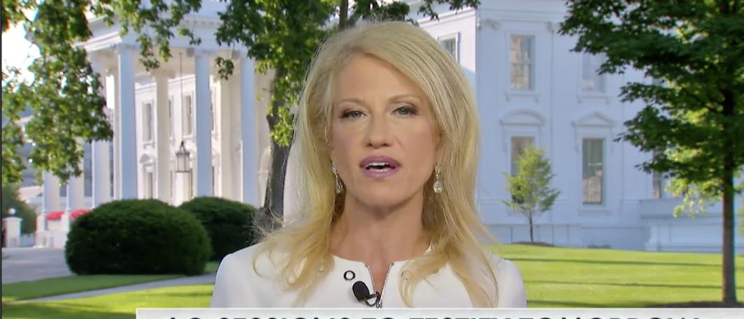 Screenshot/Fox News