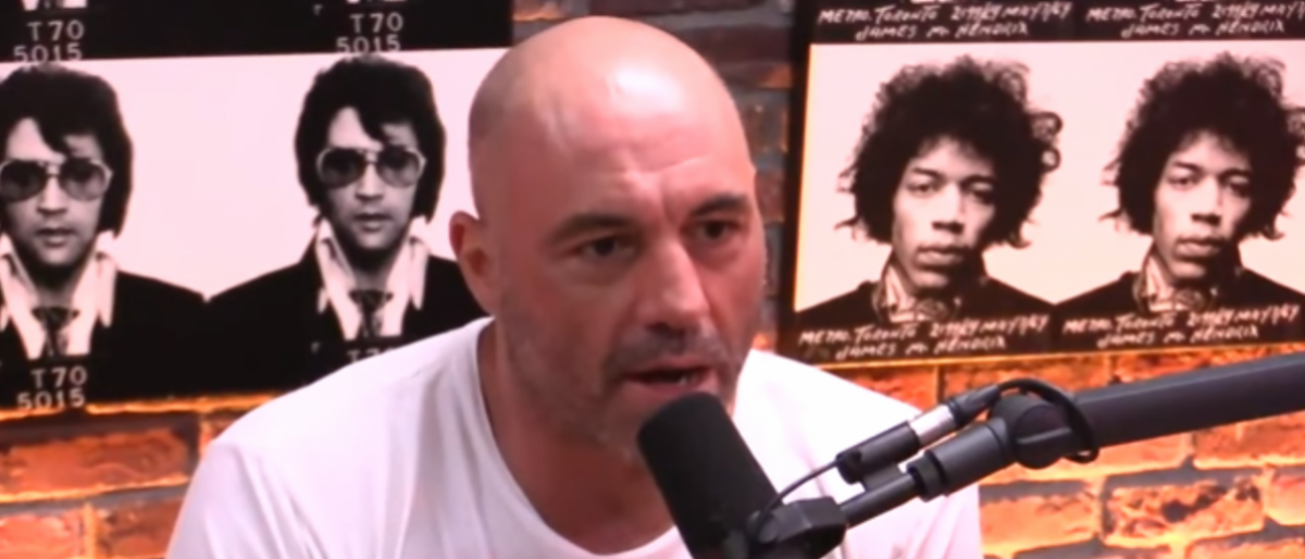 Joe Rogan Podcast Interview/Youtube Screenshot/JRE Clips