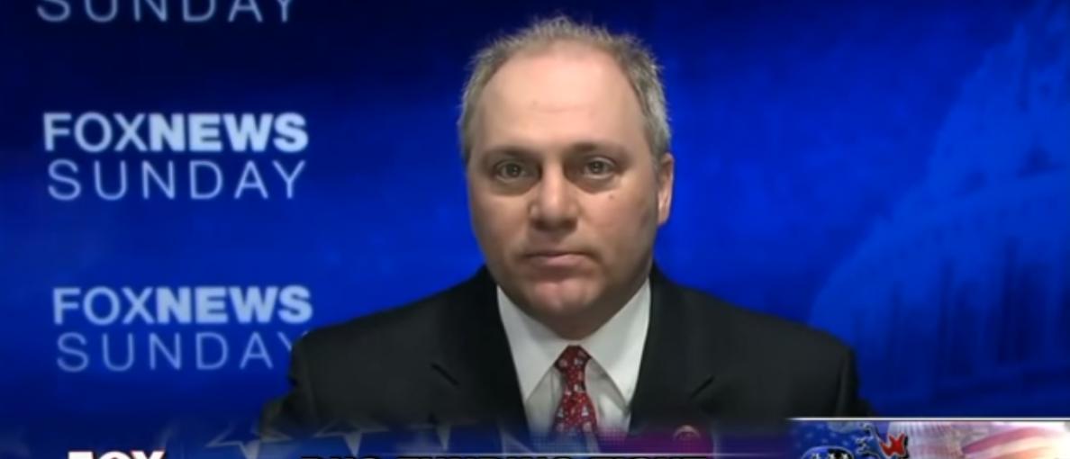 Steve Scalise Fox News Sunday/Screenshot/TVeyes