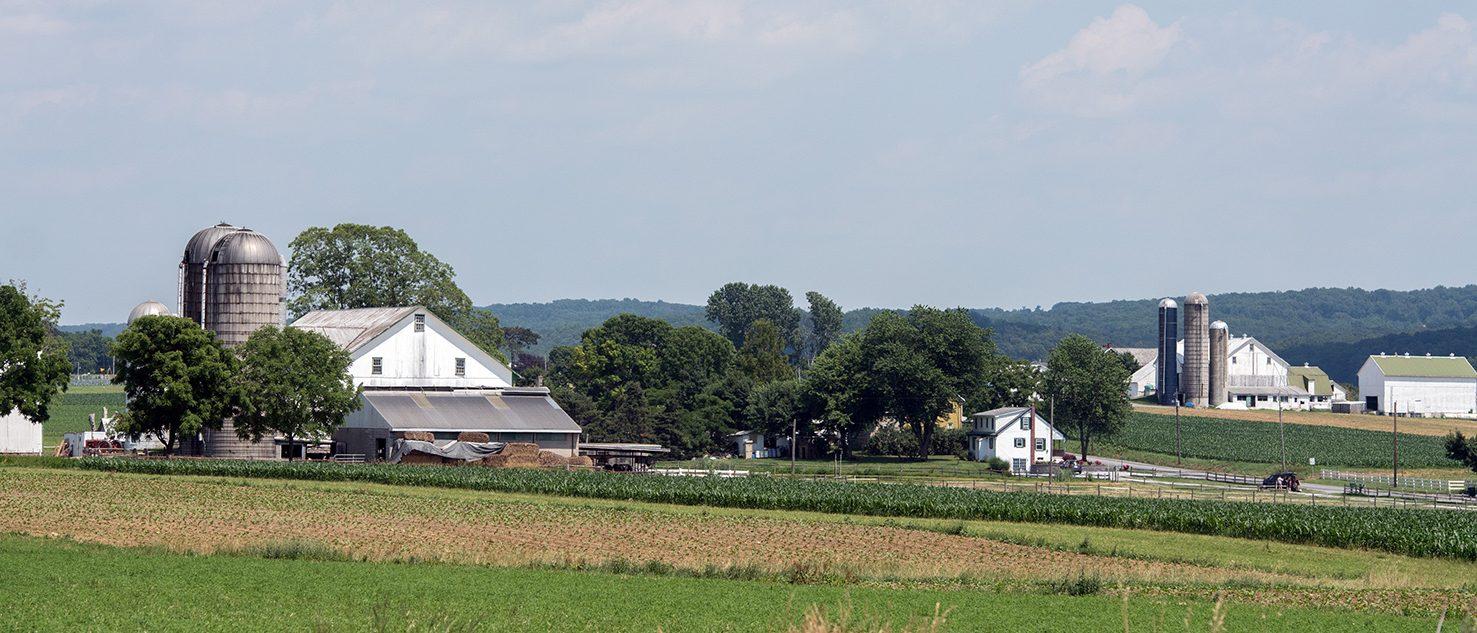 farmscape (Andrea Izzotti/Shutterstock)