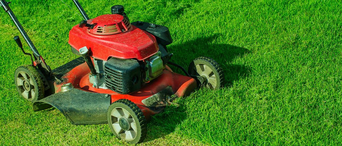 lawn mower Shutterstock/SingjaiStock
