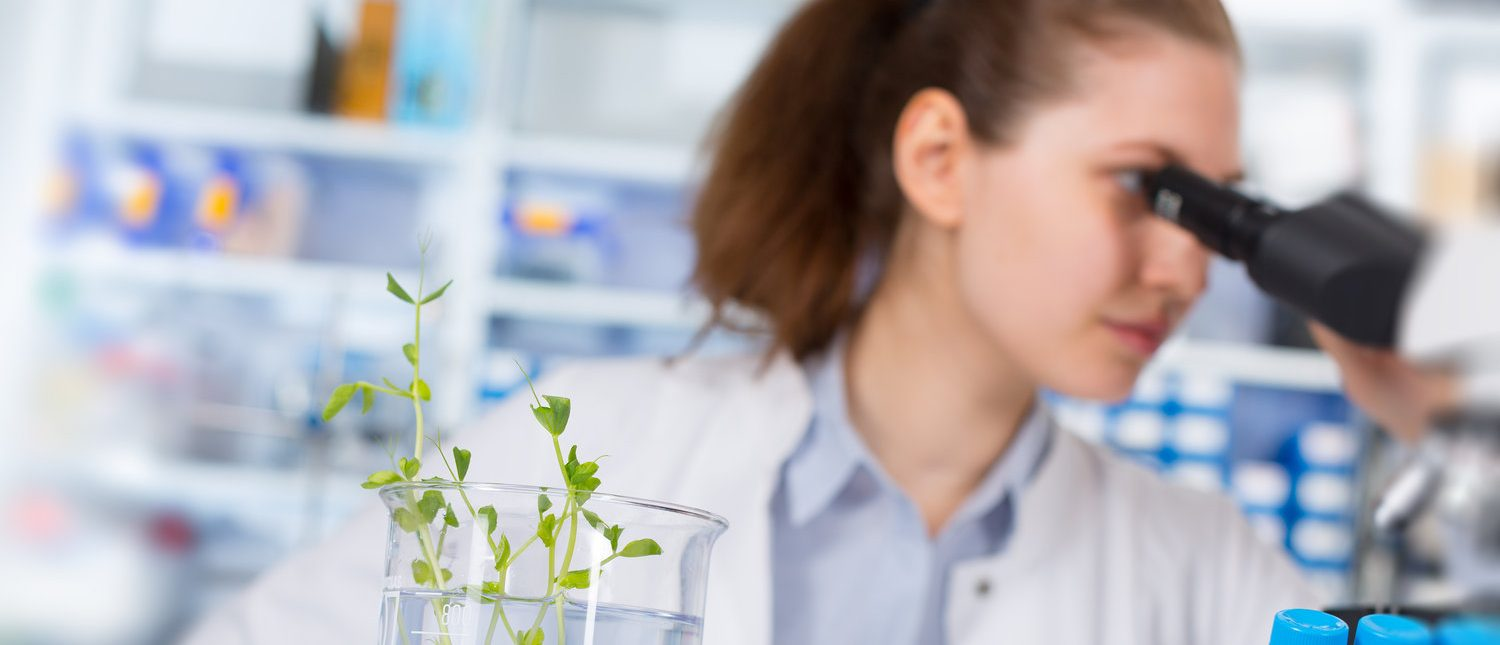 Woman in the laboratory of Plant Genetics  (Shutterstock/science photo)