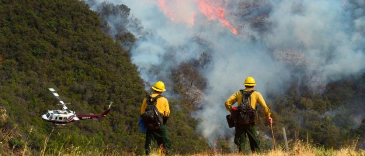 Los Padres National Forest firefighters watch as helicopters work on the northeast flank of the Whittier fire near Hot Spring Canyon outside Cachuma Lake