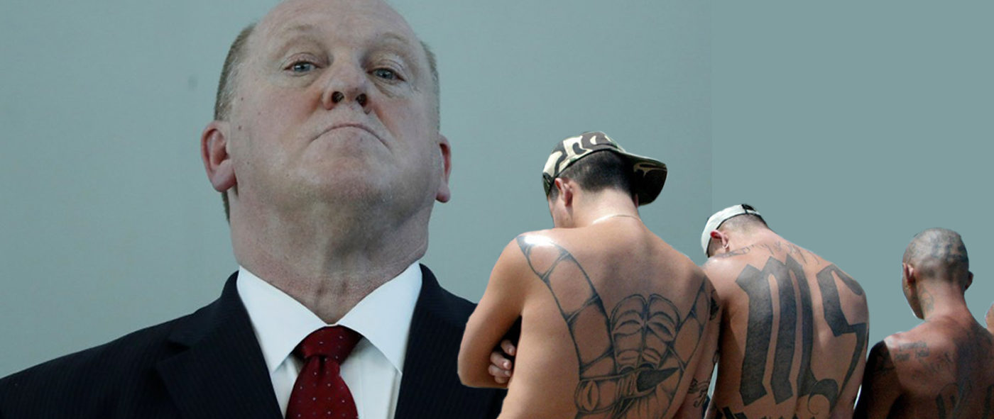 Thomas Homan and MS-13 gang members (Reuters/Daily Caller illustration)