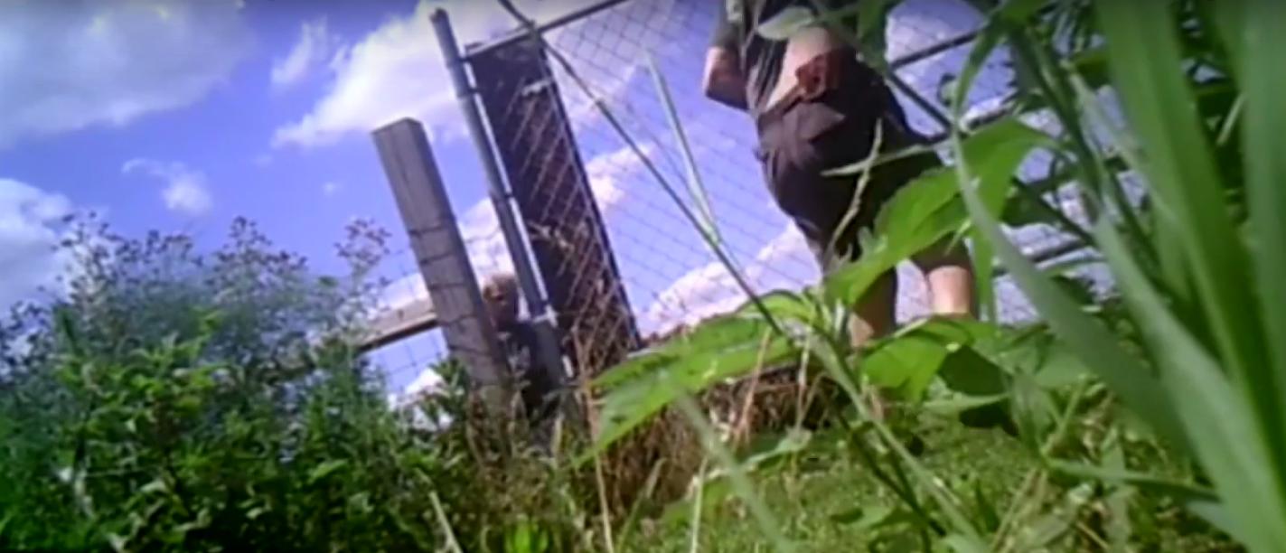An argument between two Indiana neighbors escalates into a shootout (Screenshot/Youtube Associated Press)