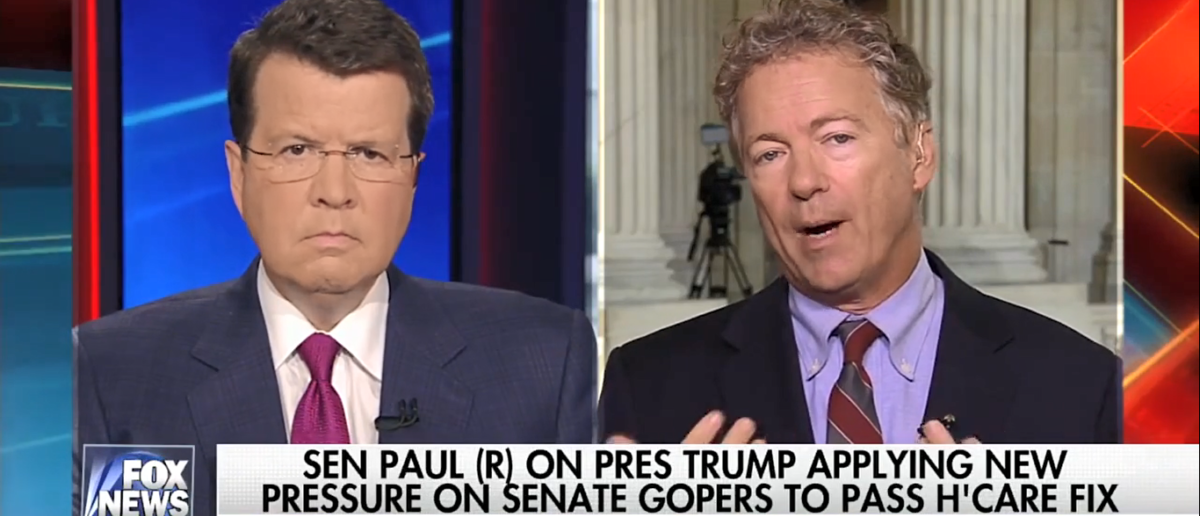Rand Paul Fox News/Screenshot/TVEyes