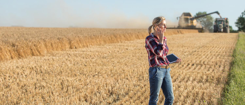 Farmer on tablet in a field (Shutterstock/bernatets photo)