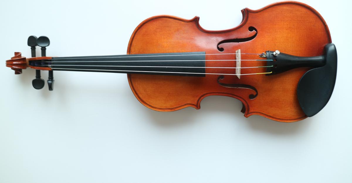 Shutterstock/ Violin front view isolated on white violinisolatedorchestraantiqueartartisticbackgroundblackbowbrowncelloclassicclassicalcolorconcertconcertofiddleharmonyimageinstrumentmelodymusicmusicalmusiciannobodyobjectoldperformanceplayscrollsinglesoundstringstudiostylesymphonyverticalviolawhitewoodwoodenShow more